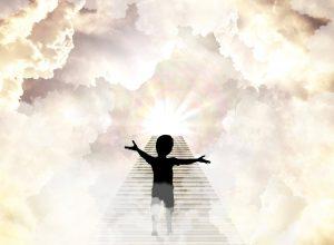 FMC world Bible for Children 1